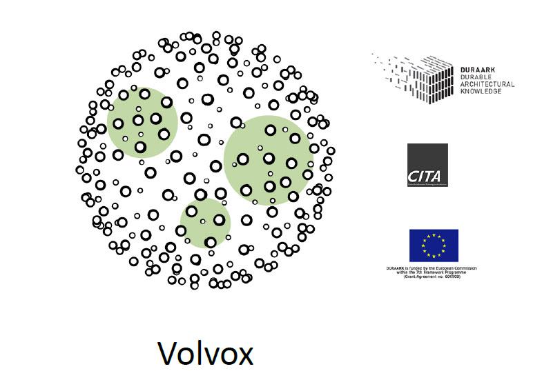 Volvox2