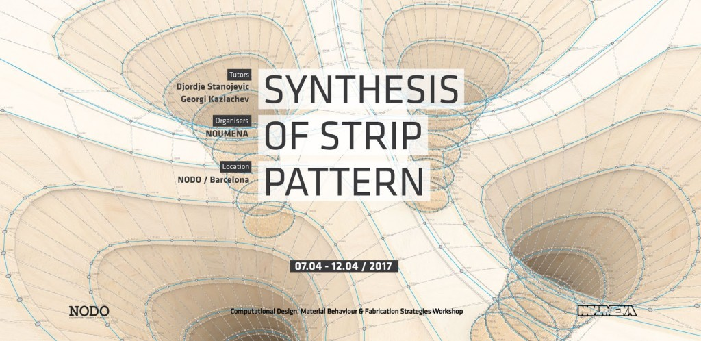 NOUMENA_cover_ws_synthesis of strip pattern